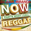 Now That's What I Call Reggae - DJ Juan Miranda