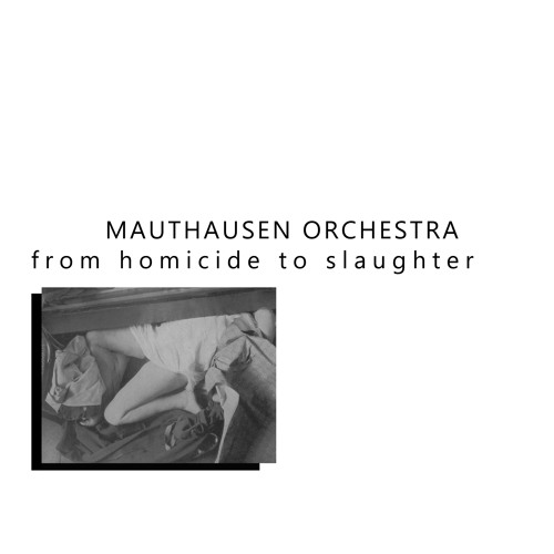Mauthausen Orchestra - Untitled Extract (from From Homicide To Slaughter LP)