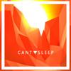 Cant Sleep (6k Flip)