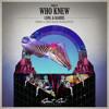Long & Harris - Who Knew (Original Mix)