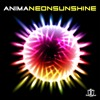 Anima - Neon Sunshine