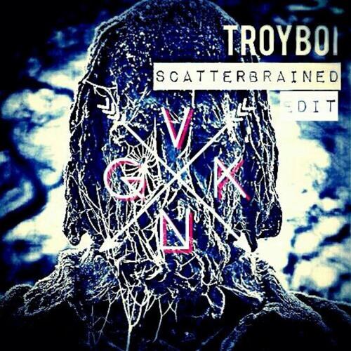 troyboi scatterbrained
