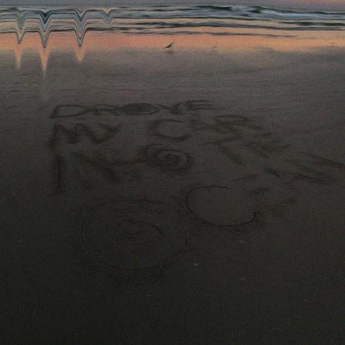 drove my car into the ocean