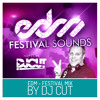 DJ CUT IN THE MIX // EDM - FESTIVAL SOUNDS