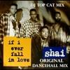 Shai - If I Ever Fall In Love - Original Reggae Dancehall Mix  DJ Top Cat