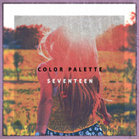 COLOR PALETTE - SEVENTEEN