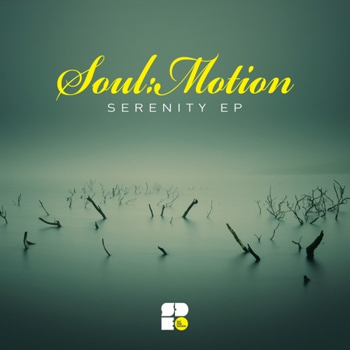 Soul:Motion - Tender Emotions (Telex Remix) (Out Now on Soul Deep Recordings)