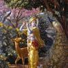 Krishna Book part 11, 16-Feb-90, Baltimore, USA