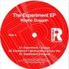 Wayne Duggan - Experiment 1 (Matthias Meyer & Patlac remix )