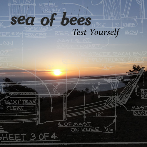 Sea Of Bees - Test Yourself