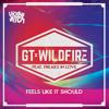 GT & Wildfire feat. Freaks In Love - Feels Like It Should (Original Mix)