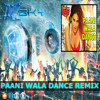 Paani Wala Dance (House Dance Mix) DJ BKy