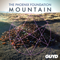 The Phoenix Foundation Mountain Artwork