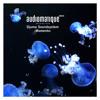 Djuma Soundsystem - Momento