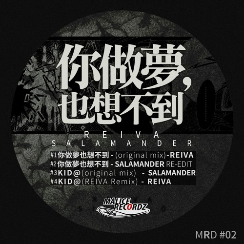 Reiva - 你做夢也想不到(Original Mix)(Preview)out now on Malice rec MRD02