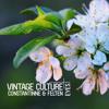 Vintage Culture, Constantinne & Felten - Eyes (Radio Mix)