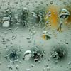 Summer Rain - DEMO