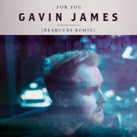 Gavin James - For You (Bearcubs Remix)