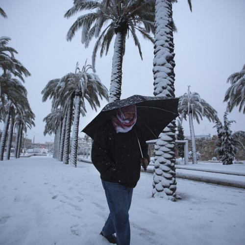 Frozen Lemons, Snow On The Palm Trees feat. Judith (Berlin 2015)