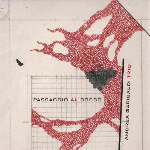 Recensione di Bruno Pollacci su AnimaJazz