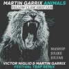 Victor Niglio & Martin Garrix And Yellow Claw - Shot Animals Gun (JulikE JulyaR MASHUP)