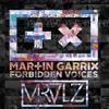 Martin Garrix - Forbidden Voices (MRVLZ Remix)