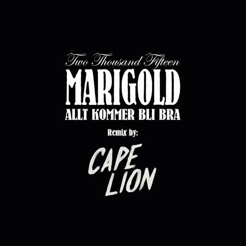 Allt Kommer Bli Bra (Cape Lion Remix)
