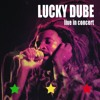 Lucky Dube - Together As One (Live In Concert)( 1992)