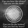 Bring Me The Horizon - Can You Feel My Heart (Effective Mashup)