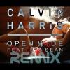 Calvin Harris feat Big Sean  Open Wide Remix