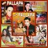 New Pallapa   Agung Juanda - Dewi Ratna  Bingung Ngamen