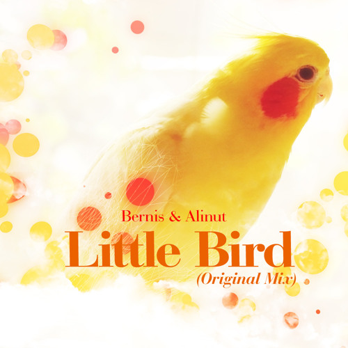 Alinut & Bernis - Little Bird (Original Mix)
