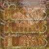 SO FUNKY recorded @ the Beatles Ashran Rishikesh