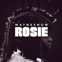 Wayne Snow - Rosie