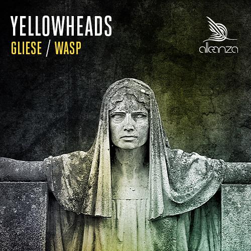 The YellowHeads -  Wasp