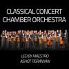 Vivaldi, The Four Seasons, Winter (L'Invierno), 2nd Movement