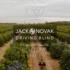 Jack Novak - Driving Blind (feat. Bright Lights)[Calibra Remix] [Free Download]