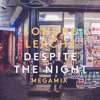 Despite The Night (megamix)