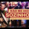 DJ Wilian Feat MC Nego Do Borel - Não Me Deixe Sozinho (Remix)