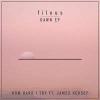 Filous - How Hard I Try (Ft. James Hersey)