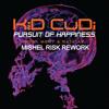 Kid Cudi & Steve Aoki - Pursuit Of Happiness (Mishel Risk Rework)