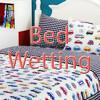 Bed Wetting - Nadia Zahr & Janine Armosita (17/03/2015)