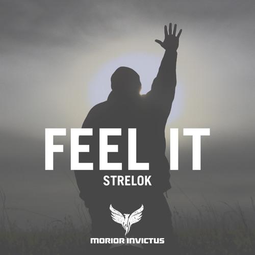 Strelok - Feel It (Original Mix)