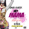 David Guetta - Hey Mama (Flipbois X Akela Festival Trap Remix) [DOWNLOAD FULL SONG IN DESCRIPTION]