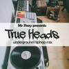 True Heads - by Mr Shay  (underground rap  mix)