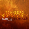 Tim Berg - Seek Bromance 2k15 (Sash_S Bootleg /Remix)