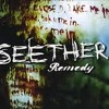 REMEDY (Seether Cover)