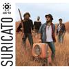 Suricato - Bom Começo (cover)