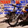 PDSS Prawn To Be Wild