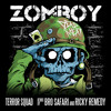 Terror Squad (Bro Safari & Ricky Remedy Remix)